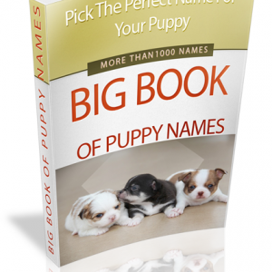 Puppy Names