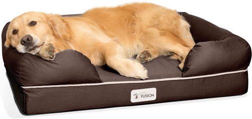 Dog Bed Review